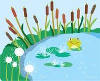 Bande dessinée de lac avec le lis et la grenouille drôles Photographie stock