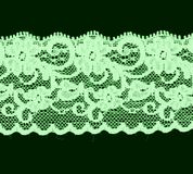Bande florale verte de lacet Image stock