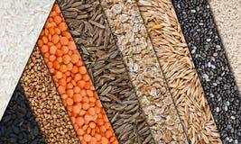 Bande oblique del collage del cereale del grano Fotografia Stock Libera da Diritti