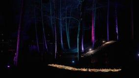 Bande rougeoyante des sacs multicolores Parc de nuit, illuminé par des sources lumineuses décoratives banque de vidéos