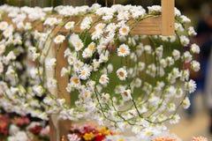 Bandeaux colorés avec des fleurs photo stock