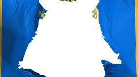 Bandeira áspera de Kyiv Kiev ilustração royalty free