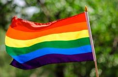 Bandeira alegre do arco-íris Imagens de Stock Royalty Free