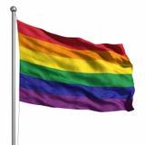 Bandeira alegre do orgulho/arco-íris Imagens de Stock Royalty Free