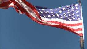 Bandeira americana video estoque