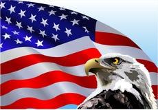 Bandeira americana de águia calva ilustração royalty free