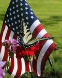 Bandeira americana e borboleta foto de stock royalty free