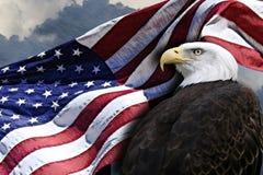 Bandeira americana e águia Imagens de Stock Royalty Free