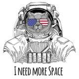 A bandeira americana Estados Unidos dos vidros da bandeira dos EUA embandeira o astronauta vestindo masculino do animal selvagem  Foto de Stock Royalty Free