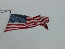 Bandeira americana no vento Imagens de Stock Royalty Free