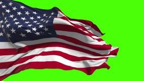 Bandeira americana que acena no vento no fundo verde ilustração do vetor