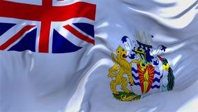 10 Bandeira antártica britânica do território que acena o fundo sem emenda contínuo do laço