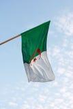 Bandeira argelino fotografia de stock