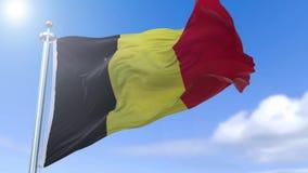 Bandeira belga video estoque