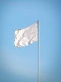 Bandeira branca Fotos de Stock Royalty Free