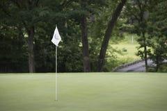 Bandeira branca sobre o verde luxúria do golfe imagens de stock royalty free