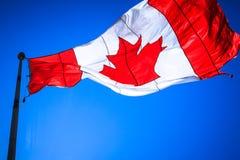 Bandeira canadense fotografia de stock