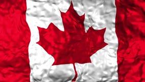 Bandeira canadense que acena no vento filme