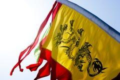 Bandeira chinesa do dragão Imagens de Stock