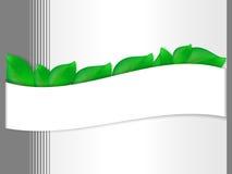 Bandeira com folhas verdes ilustração do vetor