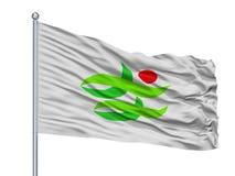 Bandeira da cidade de Nantan no mastro de bandeira, Japão, prefeitura de Kyoto, isolada no fundo branco ilustração stock