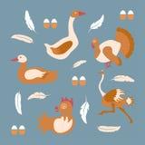 Bandeira da exploração avícola Foto de Stock Royalty Free