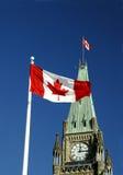 Bandeira da folha de plátano Imagem de Stock Royalty Free