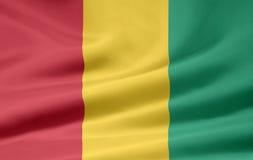 Bandeira da Guiné Fotografia de Stock
