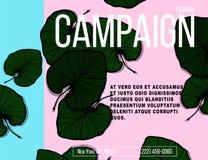 Bandeira da natureza do vetor Cartaz tropical das vibrações com folhas de palmeira verdes e citações Conceito exótico do inseto d Imagem de Stock