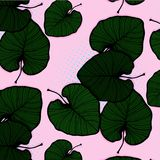 Bandeira da natureza do vetor Cartaz tropical das vibrações com folhas de palmeira verdes e citações Conceito exótico do inseto d Fotografia de Stock