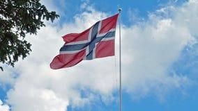 Bandeira da ondulação de Noruega vídeos de arquivo