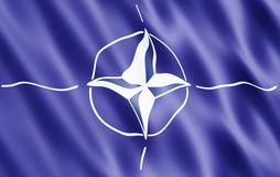 Bandeira da OTAN Imagens de Stock