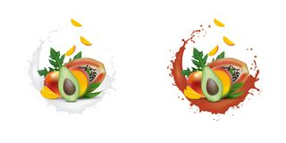 Bandeira da promoção do anúncio 3d, manga realística, abacate, papaia com fatias de queda Gelado, iogurte, propaganda de tipo do  ilustração do vetor