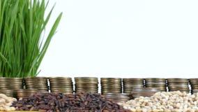Bandeira da República Dominicana que acena com a pilha de moedas do dinheiro e as pilhas do trigo filme