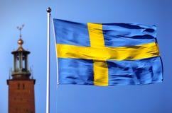 A bandeira da Suécia Imagem de Stock