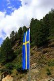 Bandeira da Suécia contra o fundo da floresta e do céu azul fotografia de stock