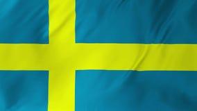 Bandeira da Suécia que acena no vento, dando laços em 2 em 1 vídeos de arquivo