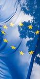 Bandeira da União Europeia de encontro ao céu e às folhas Imagem de Stock