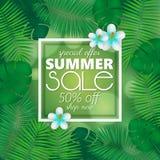 A bandeira da venda do verão, o molde do cartaz com folhas de palmeira e a selva folheiam Fundo tropical floral do verão ilustração royalty free