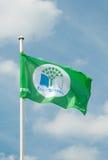Bandeira das Eco-Escolas Imagens de Stock