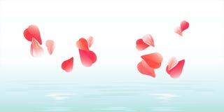 Bandeira das flores Background Projeto das pétalas Floresce as pétalas que caem na água Rosas que voam as pétalas Fundo das pétal Imagens de Stock