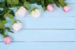Bandeira das flores Background Ramalhete de rosas cor-de-rosa bonitas no fundo de madeira azul imagens de stock royalty free