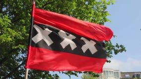 Bandeira de Amsterdão video estoque