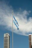 Bandeira de Argentina Foto de Stock