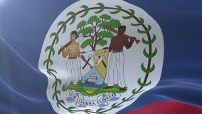 Bandeira de Belize que acena no mastro de bandeira no vento, símbolo nacional da liberdade ilustração stock