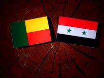 Bandeira de Benin com bandeira síria em um coto de árvore fotografia de stock royalty free