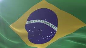 Bandeira de Brasil que acena no mastro de bandeira no vento, símbolo nacional da liberdade ilustração royalty free