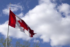 Bandeira de Canadá Foto de Stock Royalty Free