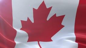 Bandeira de Canadá que acena no mastro de bandeira no vento, símbolo nacional da liberdade ilustração do vetor