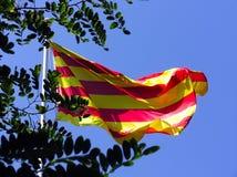 Bandeira de Catalonia Fotografia de Stock Royalty Free